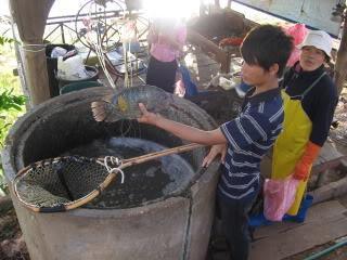 Laos2010Peters039-1.
