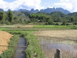 Laos2010Peters093-1.