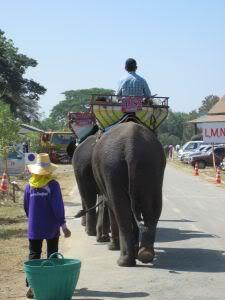 Licenseplate.jpg /Surin...The Elephant Festival pix/N.E. Thailand Motorcycle Trip Report Forums/  - Image by: