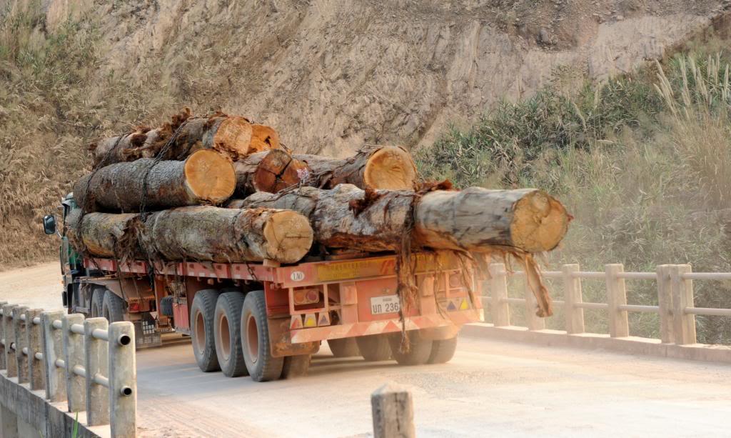 Logs_zps7fccb805.