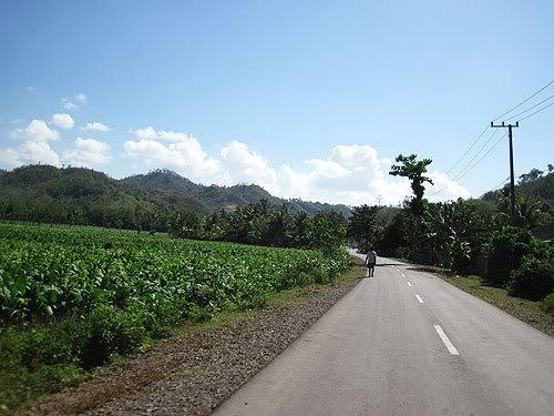 lombok62.