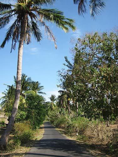 lombok71.
