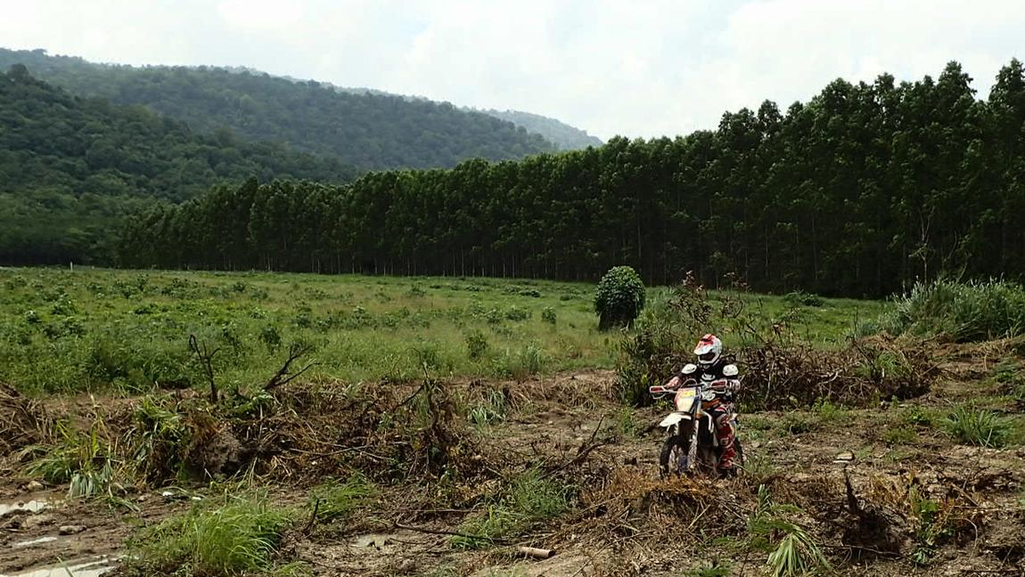 LRM_EXPORT_20170528_001033.jpg in Wet Wild And Muddy - Khao Khiew Chonburi. from  brian_bkk at GT-Rider Motorcycle Forums