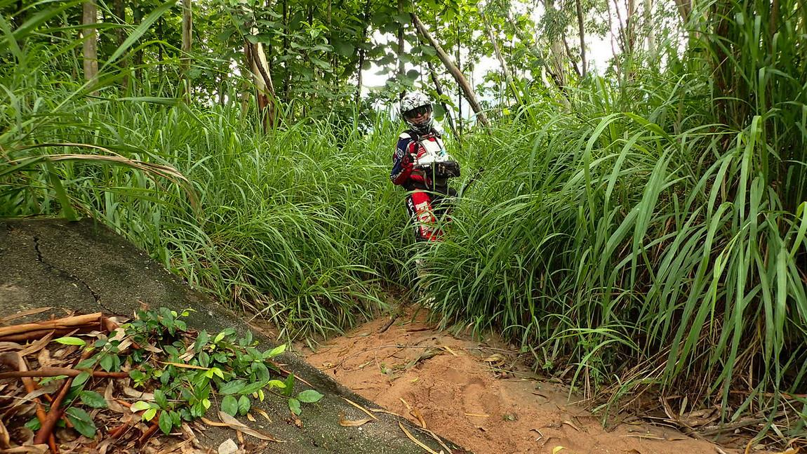 LRM_EXPORT_20170528_001108-X2.jpg in Wet Wild And Muddy - Khao Khiew Chonburi. from  brian_bkk at GT-Rider Motorcycle Forums