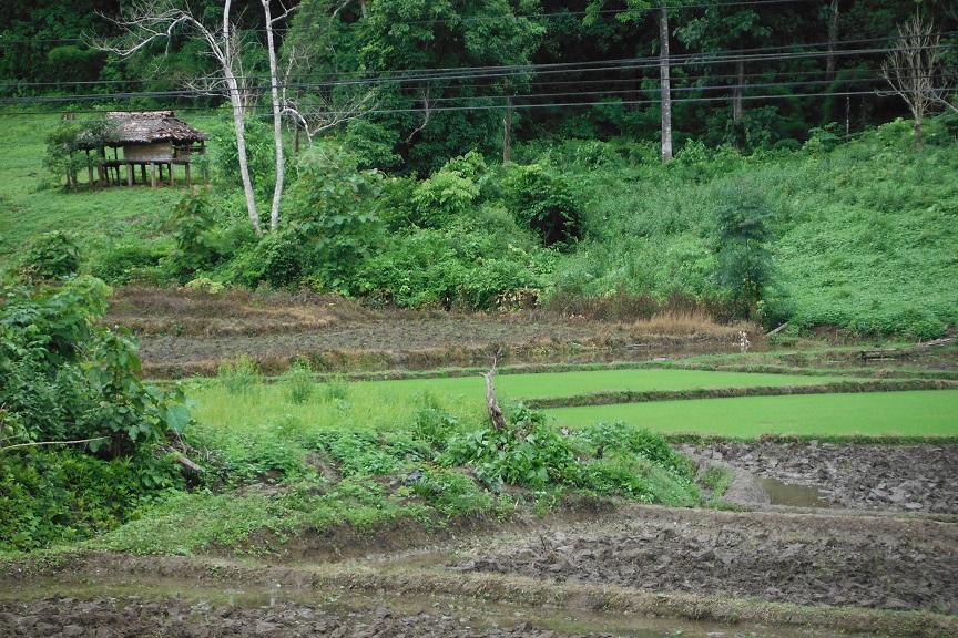 Mae Sot Thailand (2).JPG