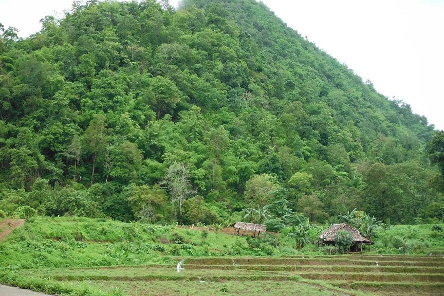 Mae Sot Thailand (5).JPG