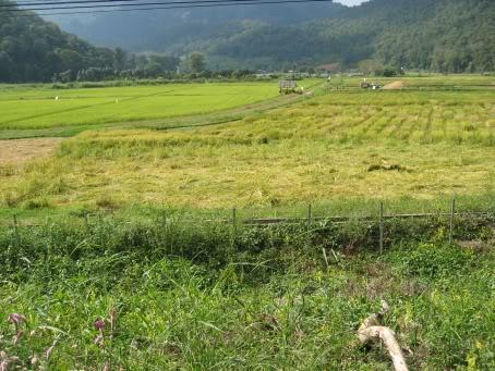 MHS012.jpg /Daewoo's 07 Trip - Ride Report 4 - Pai to Mae Hong Son/Touring Northern Thailand - Trip Reports Forum/  - Image by: