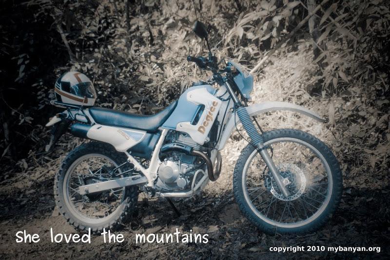 Moto0176.jpg /Rental nostalgia/Golden Oldies/  - Image by:
