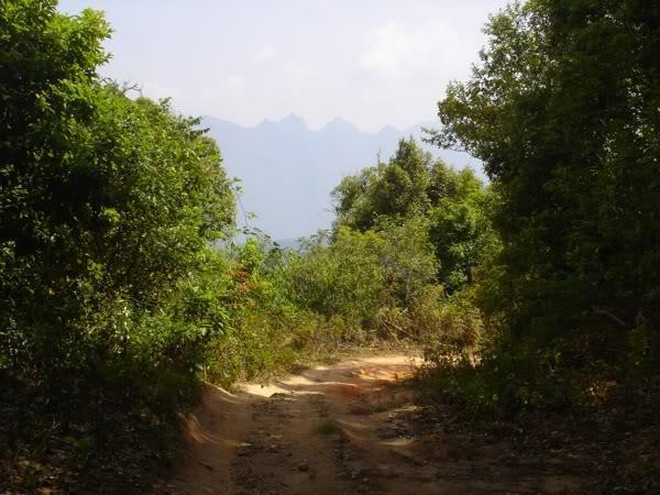 mountain4.jpg /Mae Na - Pakhia - Mae Mae loop/Touring Northern Thailand - Trip Reports Forum/  - Image by: