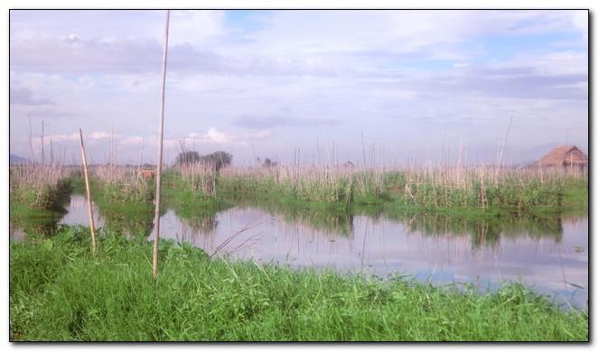 Myanmar222.