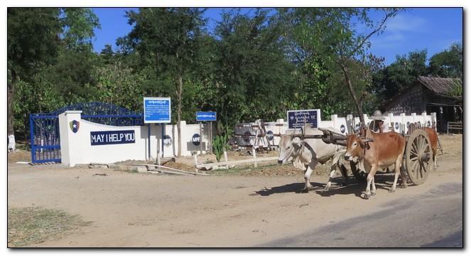 Myanmar55.