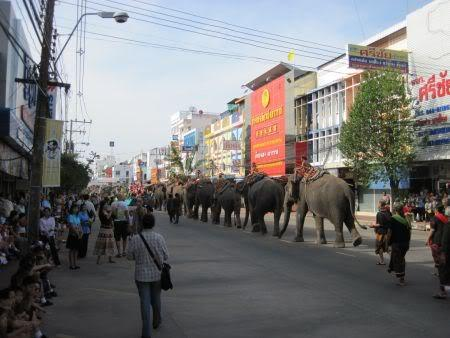 offtofeed.jpg /Surin...The Elephant Festival pix/N.E. Thailand Motorcycle Trip Report Forums/  - Image by: