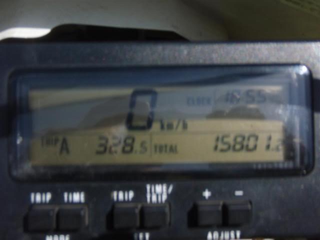 P5230026Large.