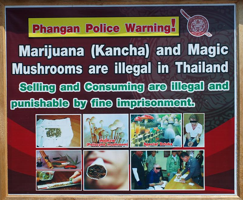 phangan-drugs-warning-thumb.