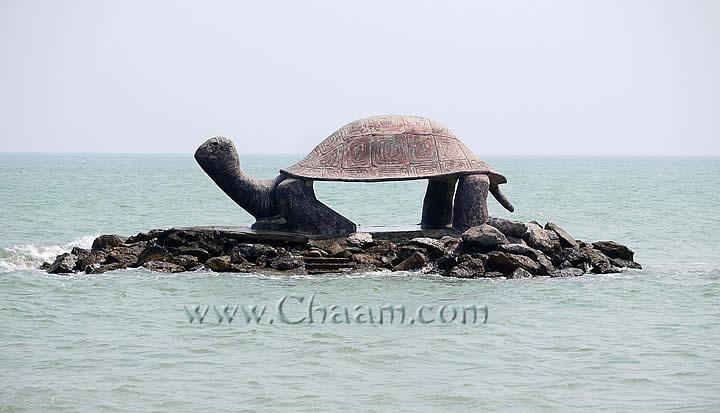 puek-tian-turtle_zps891e5f99.