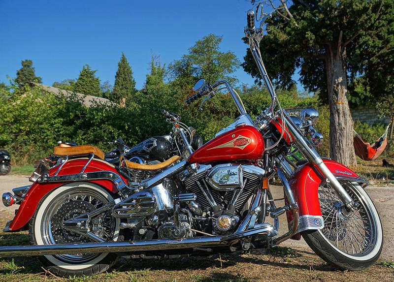 pula-bike-week-2015-harley-davidson-red.