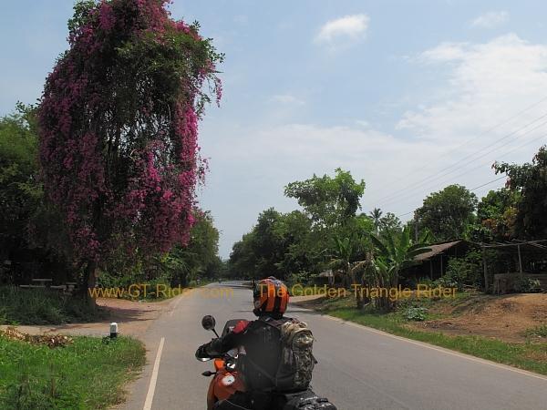route-1091-nan-chiang-muan-001.