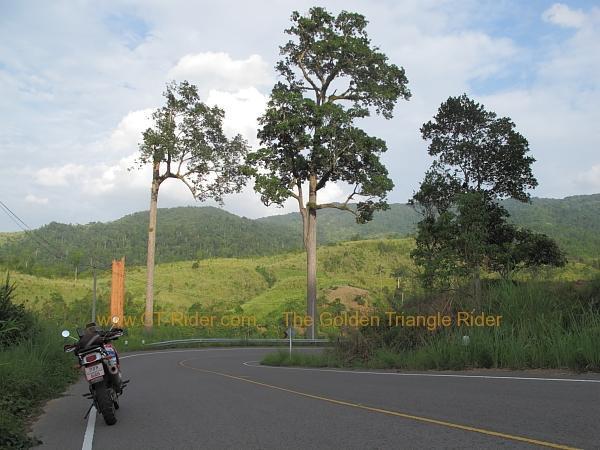 route-1148-chiang-kham-tha-wang-pha-013.