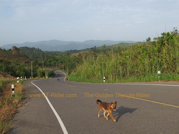 route-1148-chiang-kham-tha-wang-pha-019.