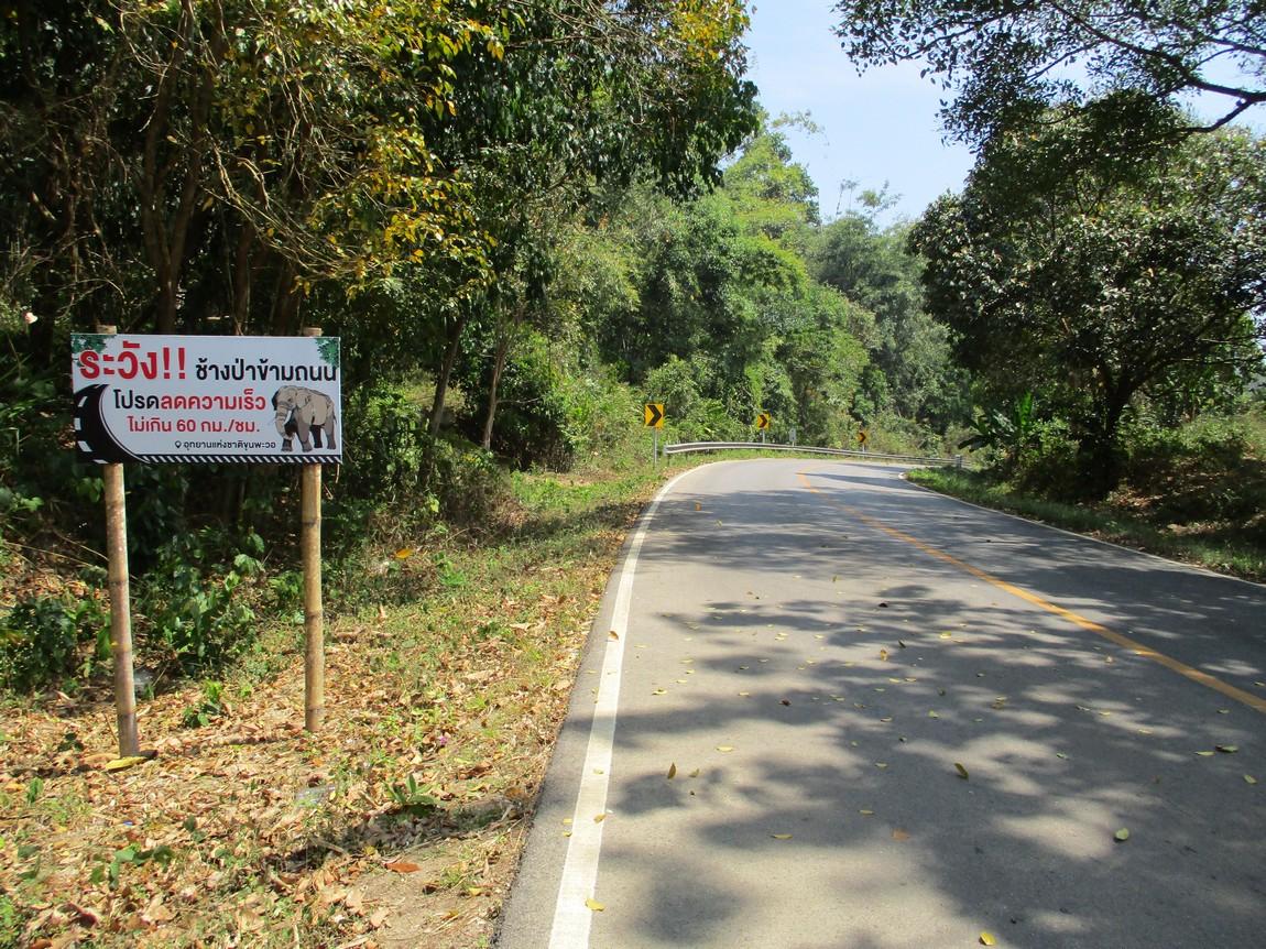 Route-1175-Mae-Ramat-Noi-to-1107 (14).JPG