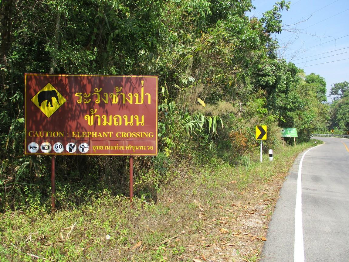Route-1175-Mae-Ramat-Noi-to-1107 (16).JPG