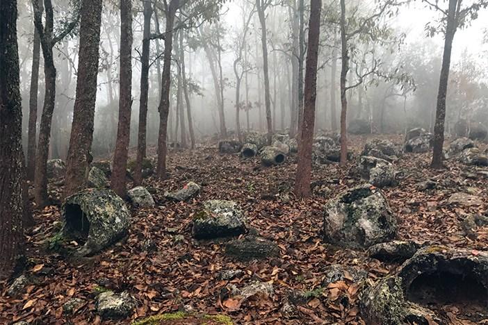 site-52-misty-morning.