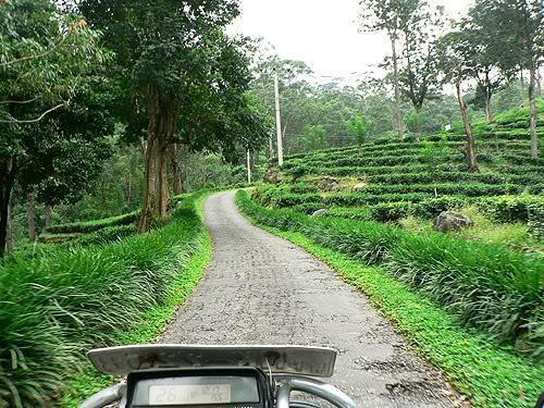 srilanka06.