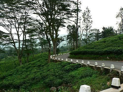 srilanka08.jpg