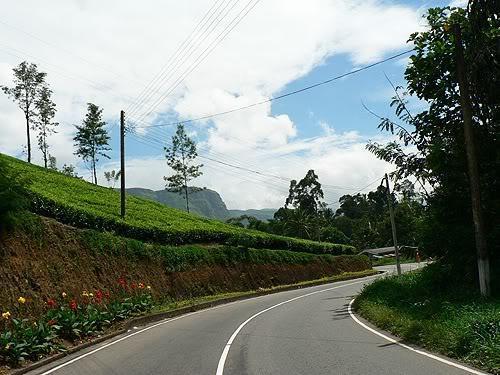 srilanka12.