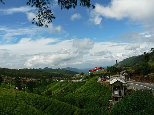 srilanka14.jpg
