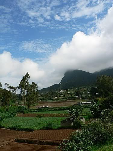 srilanka15.jpg