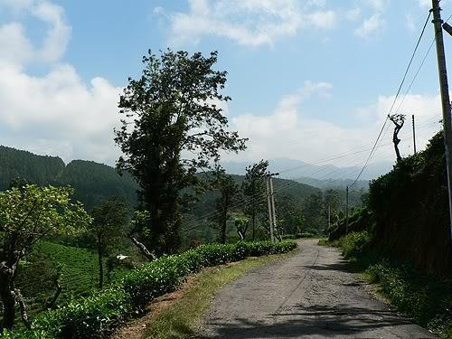 srilanka22.jpg