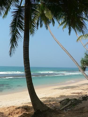 srilanka54.jpg