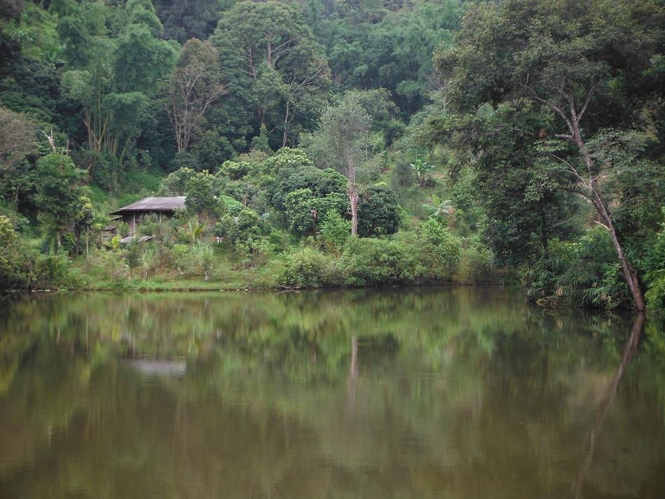 Tha Ton Thailand (8).JPG