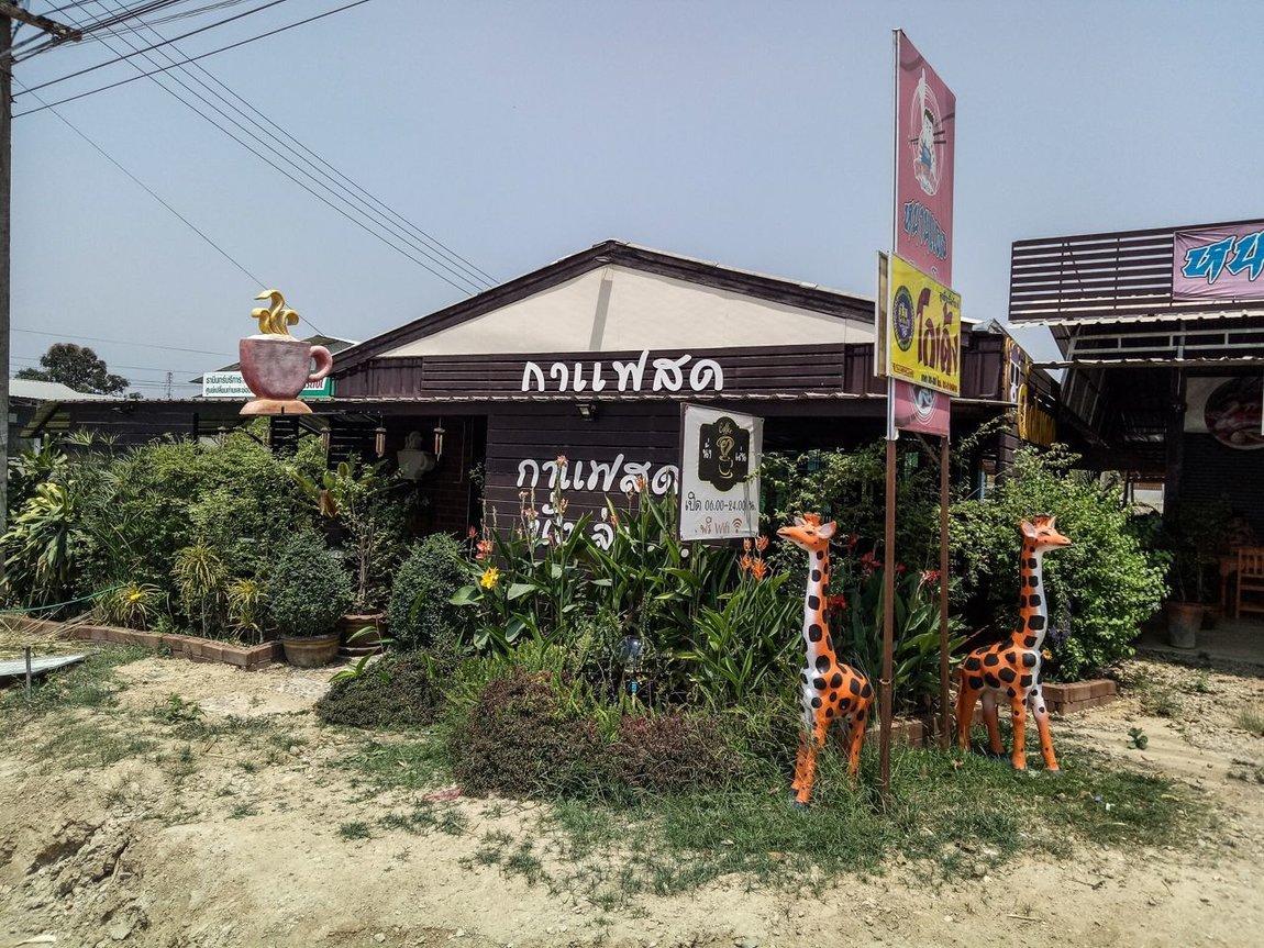 Thai 2018-197.