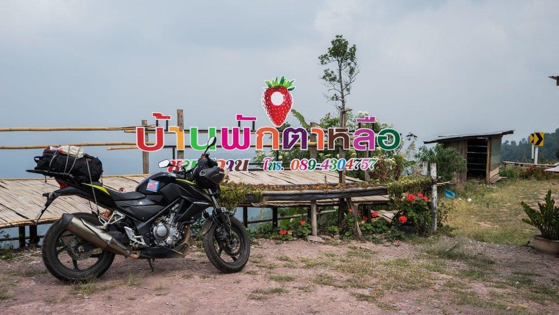 Thai 2018-330.