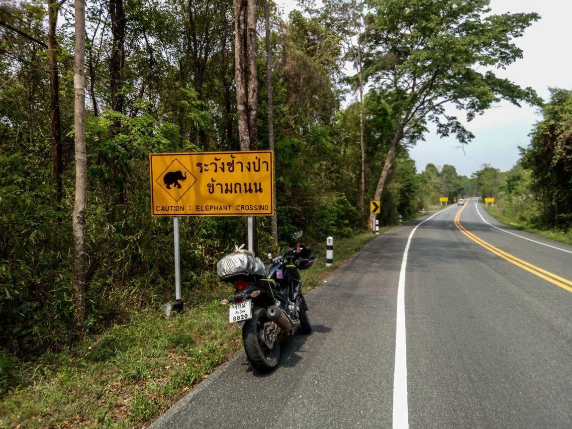 Thai 2018-377.