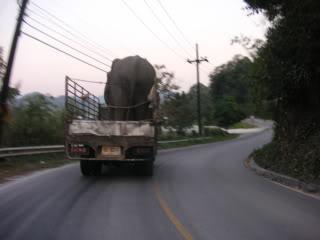 Thailand2007154.