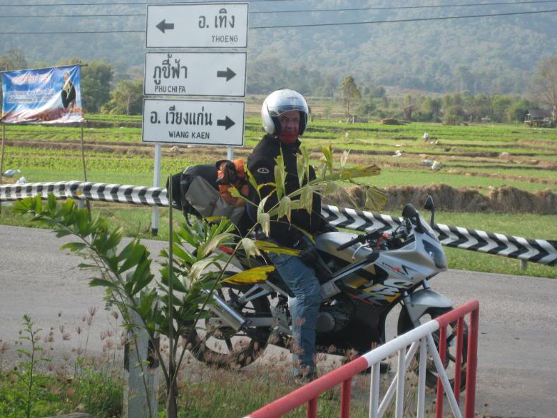 thailand818.jpg in North Thailand Motorbike Tour  - The Official Trip Report from  Danielle at GT-Rider Motorcycle Forums