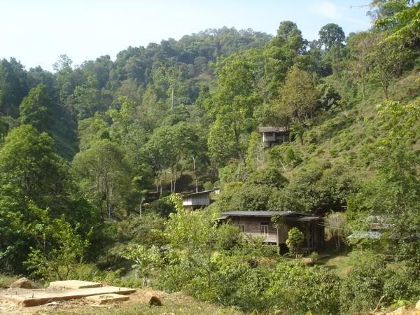village1.