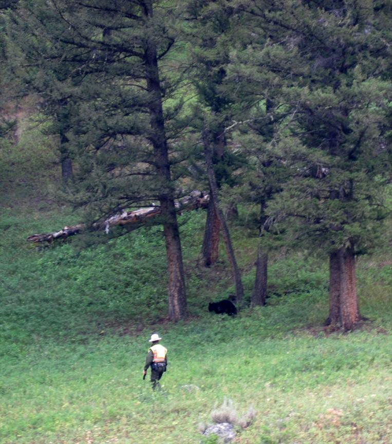 YellowstoneJuly27th_008.jpg