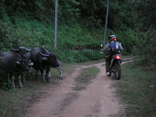 yy17.jpg /Mae Hong Son loop with some dirty bits./Touring Northern Thailand - Trip Reports Forum/  - Image by: